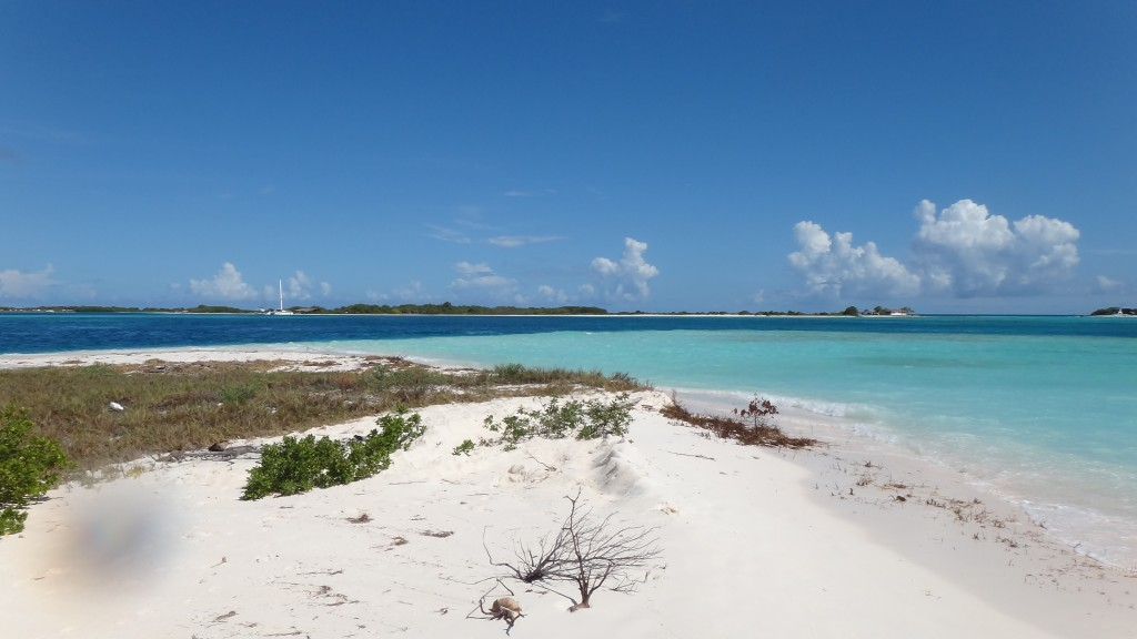 What a color of the water in Los Roques!